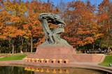 Pomnik Chopina - 77534020