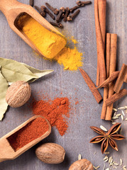 Several kinds of spices on the table