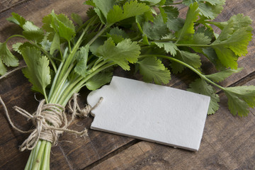 bouquet of fresh coriander or cilantro, price tag on white woode