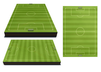 Layouts of a football field from different species