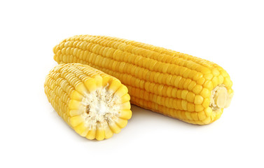 ears of corn on white background