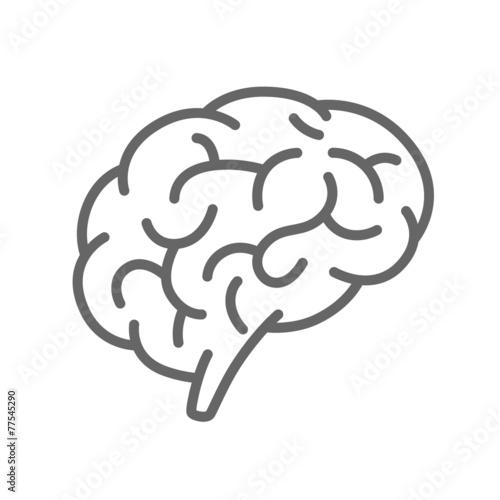 Zdjęcia na płótnie, fototapety, obrazy : Silhouette of the brain on a white background
