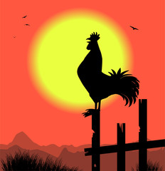 silhouette di gallo