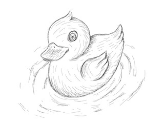 Rubber Duck, illustration in sketch style