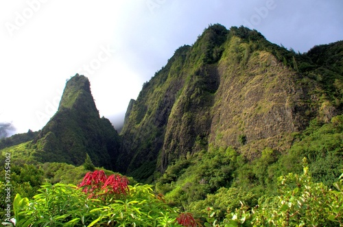 Foto op Canvas Natuur Park Iao Needle, Maui Hawaii
