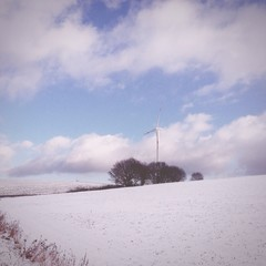 windread im Schnee