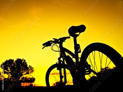 canvas print picture bicicleta de montaña