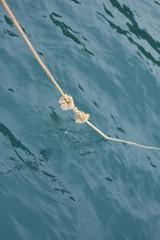 Sea node