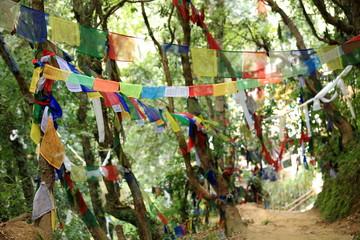 Buddhist prayer flags. Thrangu T.Yangtse-Namo Buddha-Nepal. 1005