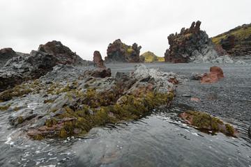 Rock formations in black sand beach of Djupalonssandur