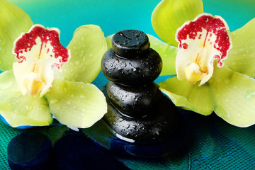 Spa stones with water drops and beautiful blooming orchid in