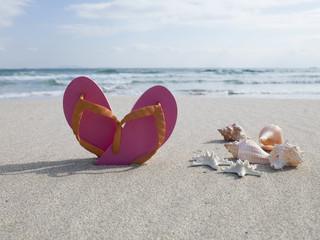 Shells, sand, beach sandals
