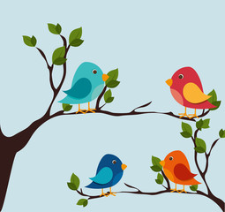 Bird design, vector illustration.