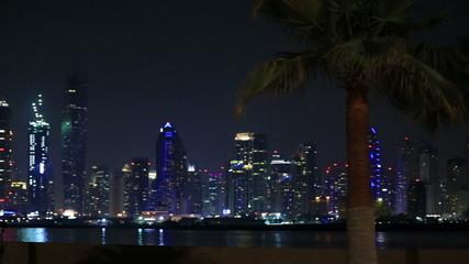 view of palm and Dubai skyscraper at night