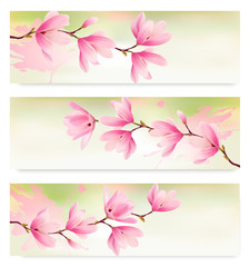 Three Spring banners with blossom brunch of pink flowers. Vector