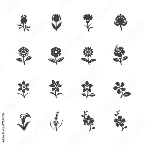 Flower Icons for Pattern - 77586200