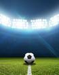 Leinwanddruck Bild - Stadium And Soccer Ball