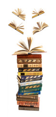 Big stack of books with opened books flying away