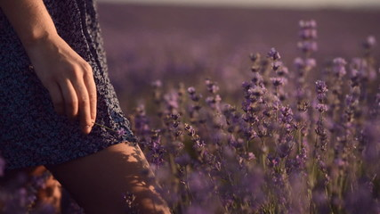 Close-up of a girl in a lavender field, below the belt