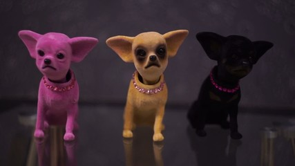 Chi-hua toy dog accessory for cars
