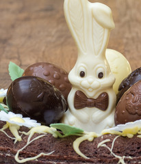 Easter Cake with Eggs and Bunny Closeup