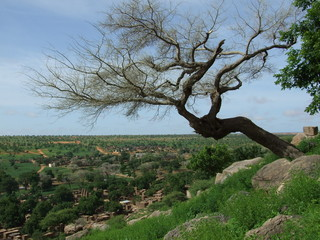 Paisaje rural africano