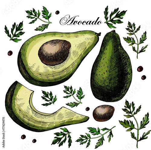 Set with Avocado - 77624478