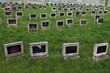 Jewish Cemetery in Terezin, Czech Republic. - 77624885