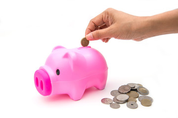 pink piggy bank with coin for save your money