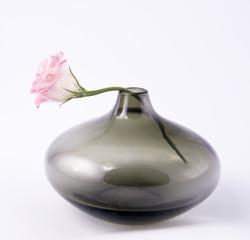 Rosebud pink in black round vase.
