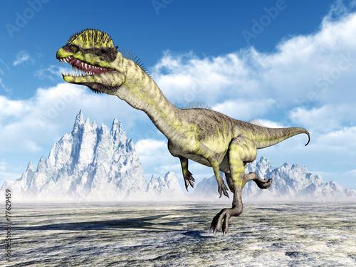 canvas print picture Dinosaur Dilophosaurus