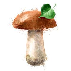 mushroom vector logo design template. nature or food icon.