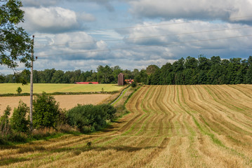 Landscape with a striped field after harvesting.