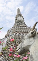 Thailandia. Bangkok, Wat Arun