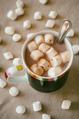 Cup of cocoa with marshmellow