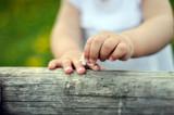Fototapety hände vom kind