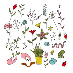 Set of spring plants, flowers and animals