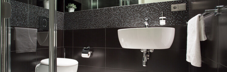 Black and white luxurious bathroom