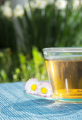 Cup of tea with chamomile flower