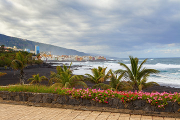 puerto de la cruz view
