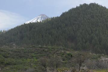 Bird's eye view Tenerife