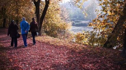 autunno persone a passeggio video