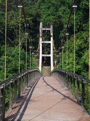 Suspension bridge