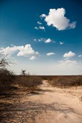 Btswana, Africa
