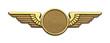 Leinwanddruck Bild - Gold Wings
