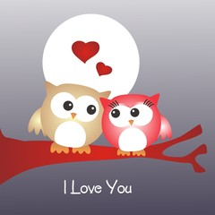 San Valentín_Pareja de buhos enamorados_I love you