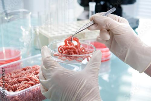 Leinwanddruck Bild Food quality control expert inspecting at meat specimen