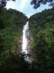 Salto de agua en el bosque (Chilasco, Guatemala)