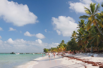 Tropical beach. Isla Saona, La Romana, Dominican republic