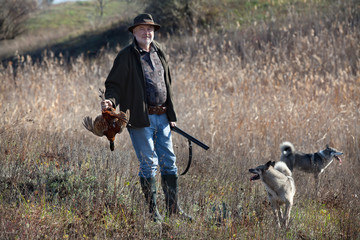 Hunter with a wildfowl and dogs
